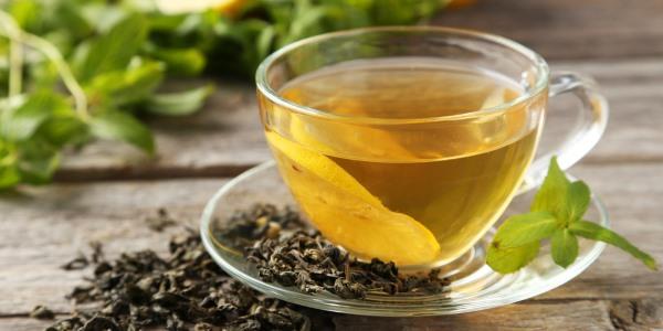chá boldo do chile