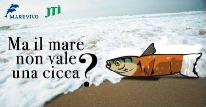 Campanha pelas praias limpas