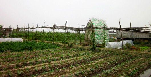 soluções da bioarquitetura para a sustentabilidade