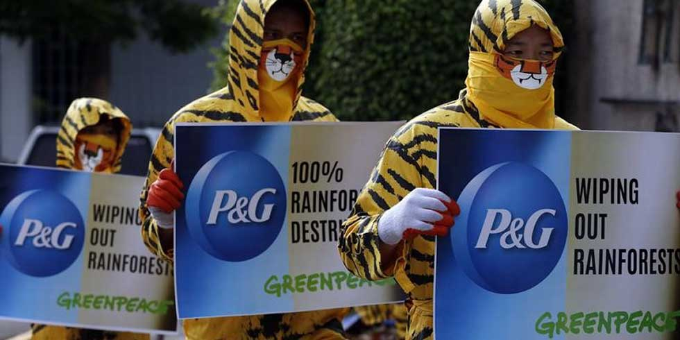 P&G muda em nome da preservação