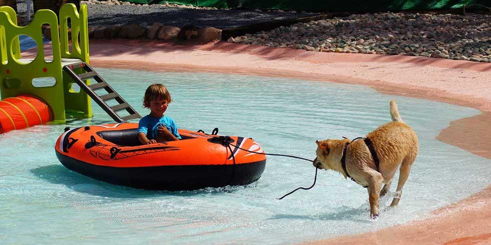 Can Janè: um resort para cães