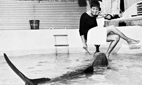 delfino peter