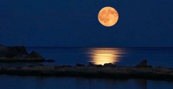 efeitos da lua cheia sobre o homem, plantas e animais