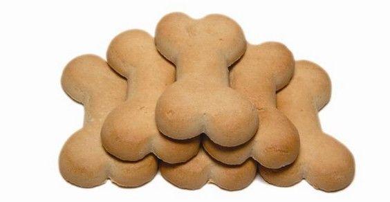 biscoito caseiro para pet