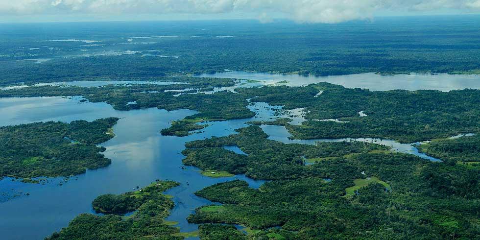 destruição de reservas florestais na Brasil