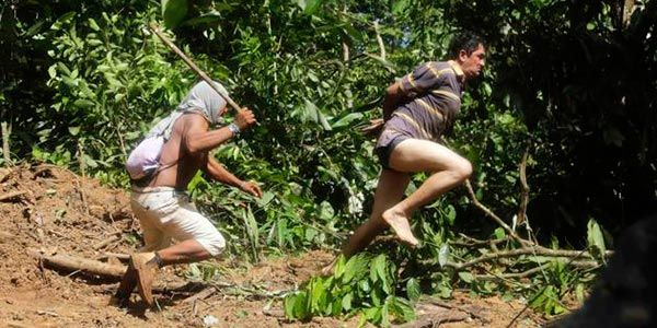 Índios x Madeireiros