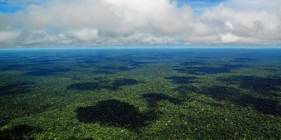 redução do desmatamento no Brasil