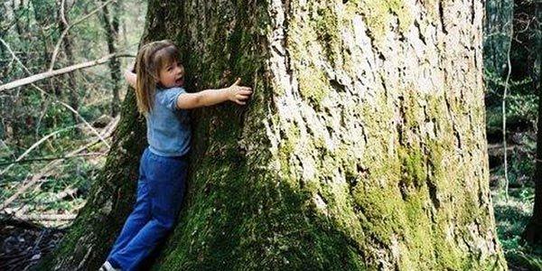 Abraçar uma árvore para sentir-se bem