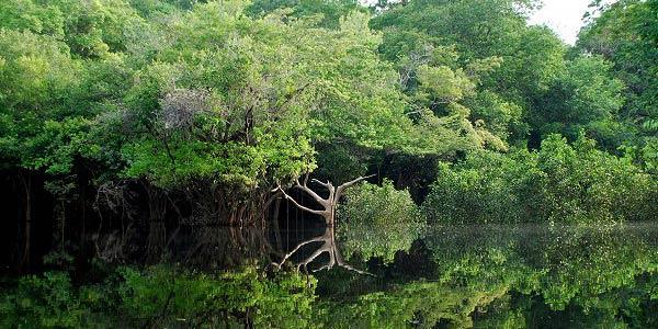 Ministério Público que impedir Agência Nacional de Águas de autorizar novas obras em rios amazônicos