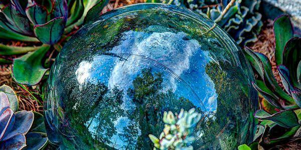 COP20 e o aquecimento global