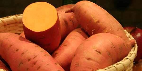 Deficiência de vitamina A: a batata-doce