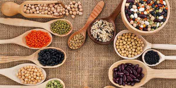 Dietas vegetariana e vegana:proteínas necessárias