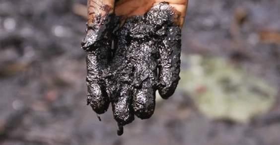 Shell pagará € 70 milhões para pescadores no Delta do Níger
