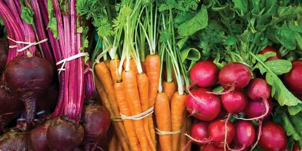 reduzir a exposição aos pesticidas