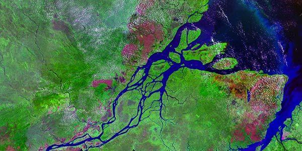 Bacia amazônica emite de 4 a 5% de gás metano no mundo