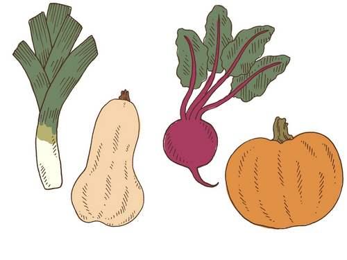 Tatuagem verduras e raízes