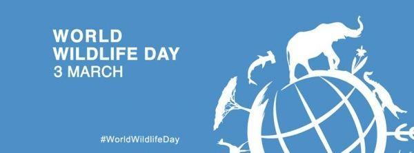 Logotipo da ONU para o Dia da Vida Selvagem