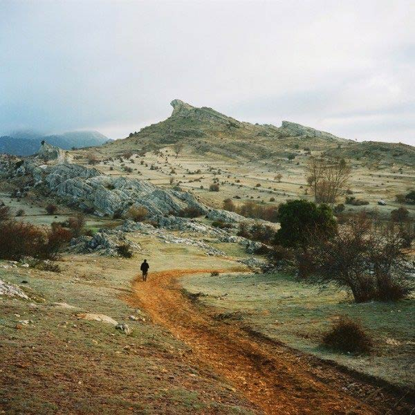 Landscape Antoine Bruy
