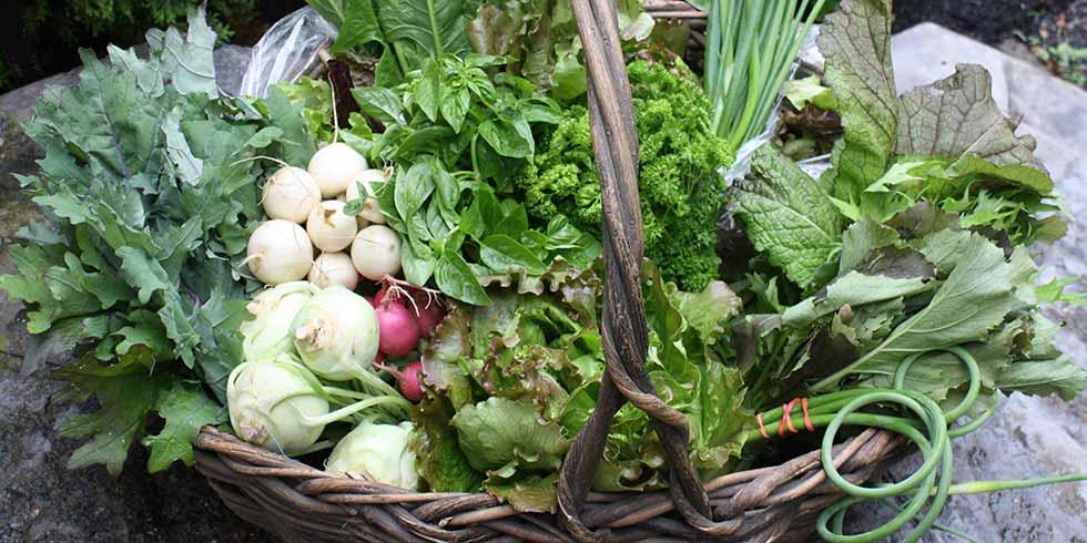 verduras abril