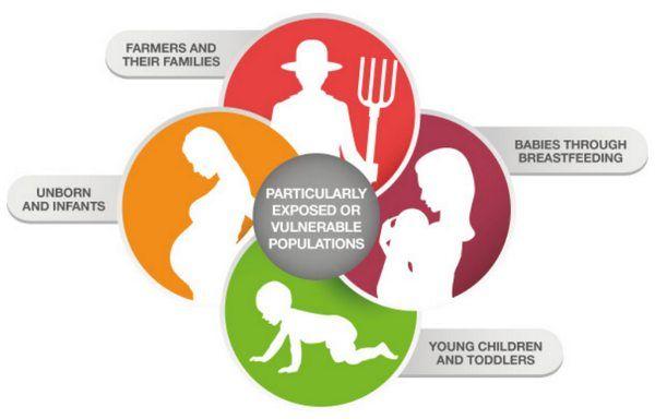 Maiores riscos uso de agrotóxicos