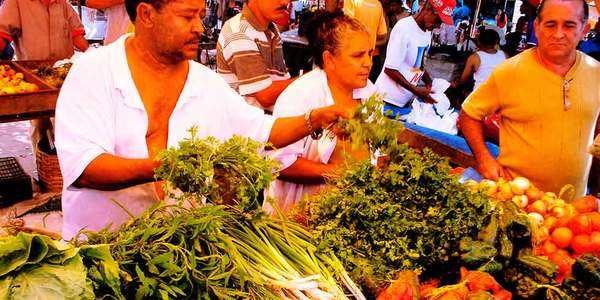 habitos alimentares brasil