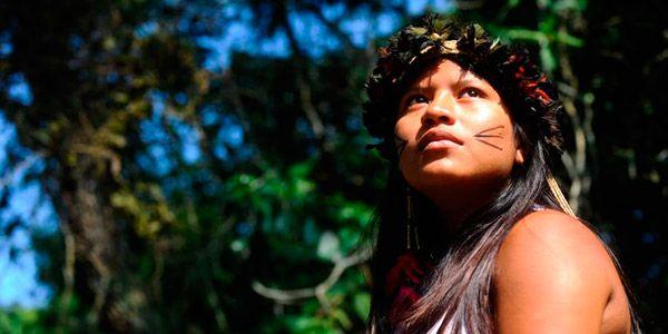 projetos indigenas