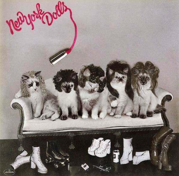 New York Dolls gato