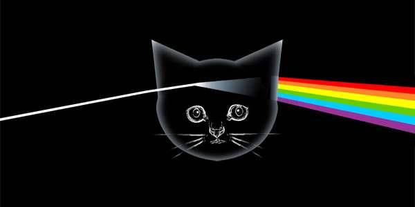 discos gatoss protagonistas