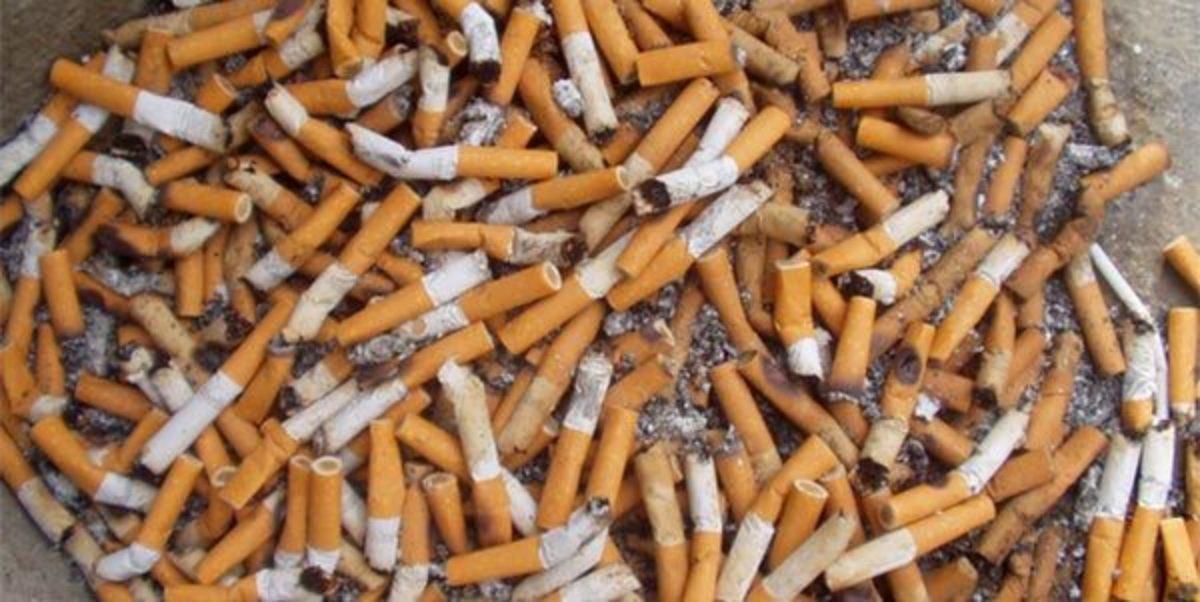 Resultado de imagem para bituca de cigarro