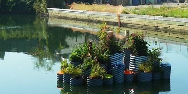 Jardim flutuante GrowOnUs