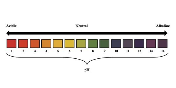 Escala pH
