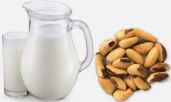 leite de castanha em casa