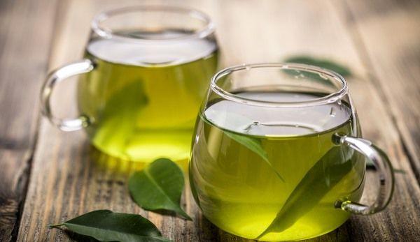 Chá de Oliveira 2