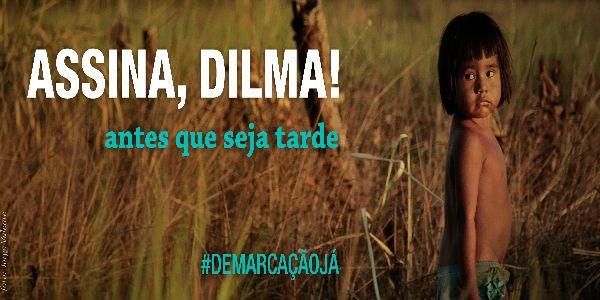 assina-dilma