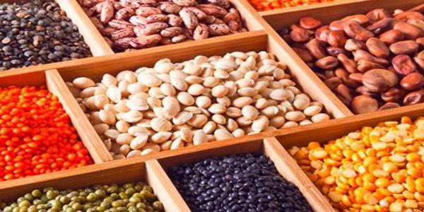 ano-internacional-leguminoas