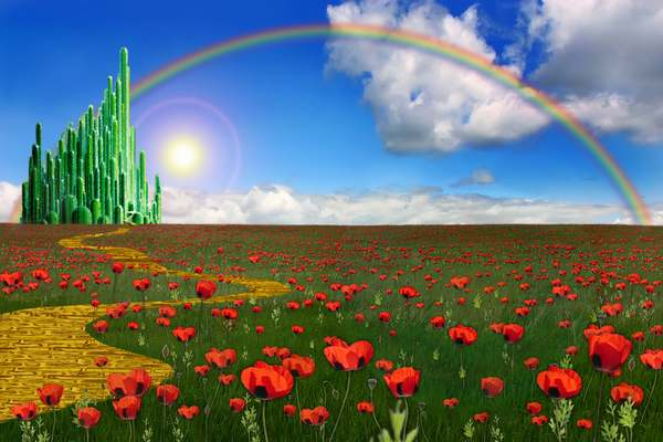 estrada certa arco iris