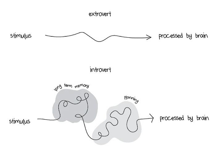 extrovertidos e introvertidos 1