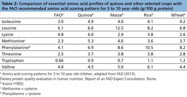 quinoa tabela
