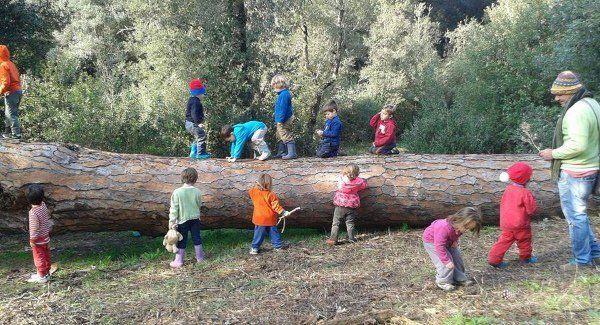 escola crianças floresta 3