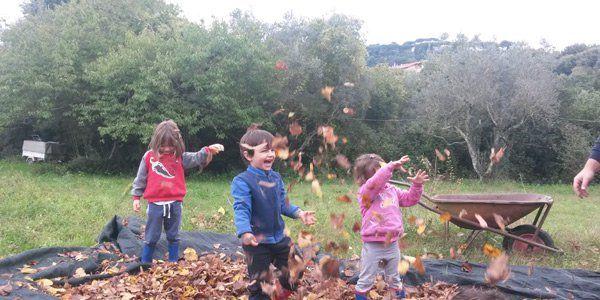 escola crianças floresta