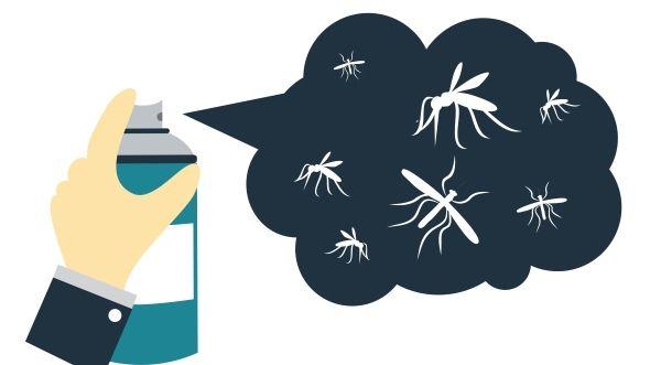 remedios-caseiros-insetos-casa