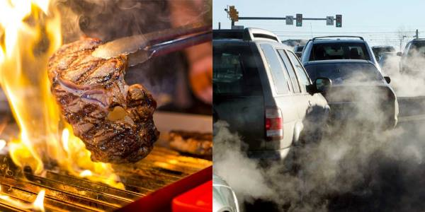 carne-carro