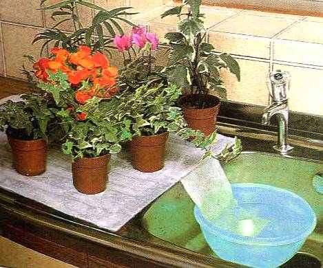 vasos sobre toalha