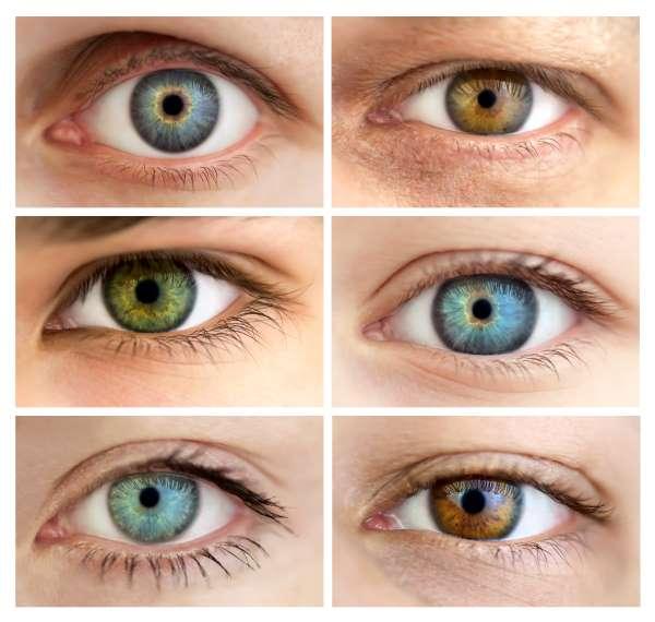 iridologia 2