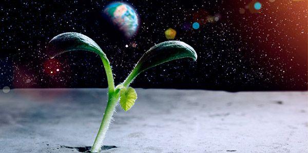 Vida-outro-planeta