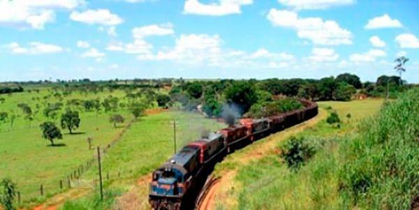 petição-trem