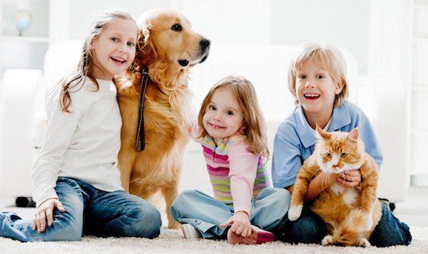 criancas e animais 2