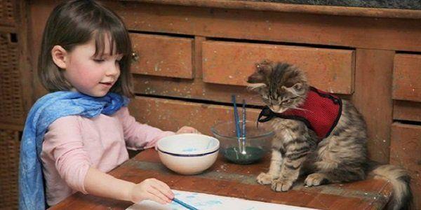 criancas e animais 5