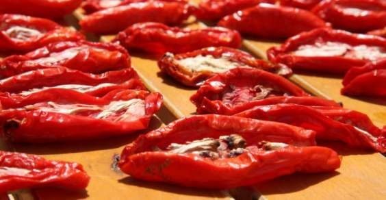 secar tomate