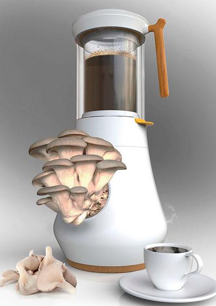 cafe fungo 2